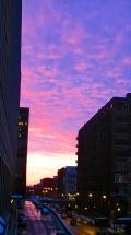 Violet sky <3