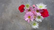 B day/ V day Flowers