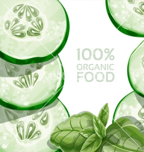 background-with-green-cucumber-and-basil-vector-1225369