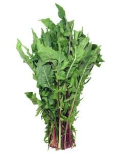 dandelion-greens-lg
